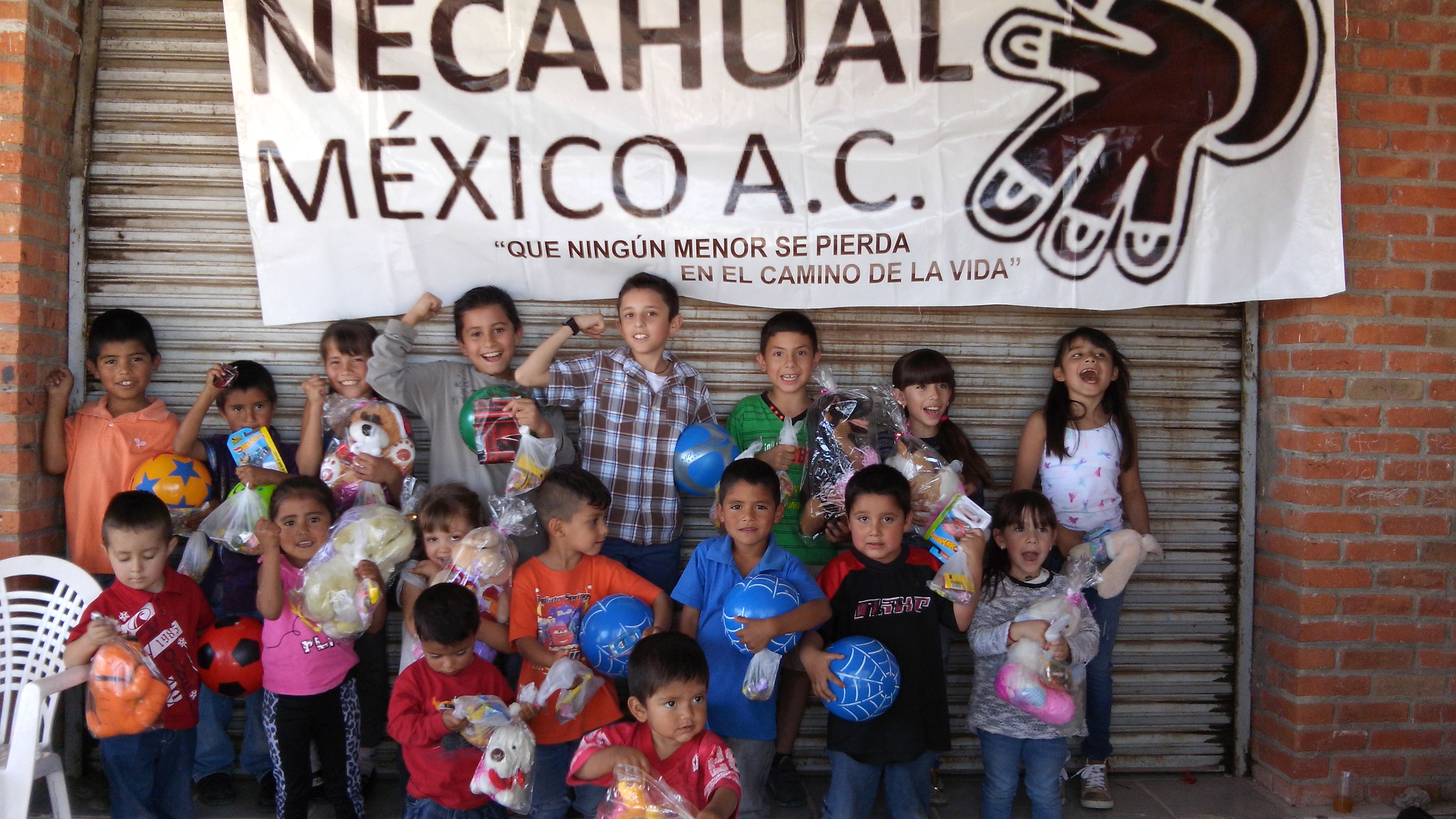What does Necahual Foundation do?